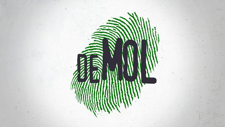 widm default image - Wie is de mol | molblog 7